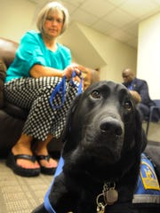 Willow, the service dog, works at the One Place Family Justice Center in Montgomery, Ala. on Wednesday August 6, 2014.