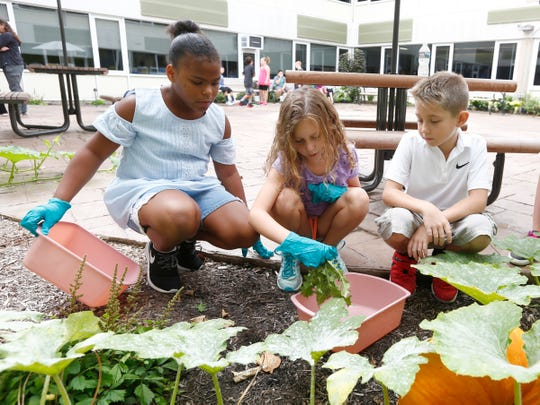 Hanissa Lubin, left, Kiera Hinkley and Nick Defelice weed the garden in the courtyard of the Viola Elementary School in Montebello on Thursday, September 14, 2017.
