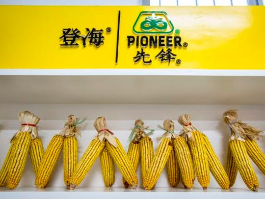 "DuPont Pioneer's flagship store in a Jinan, China, sells 335 seed, the ""hero hybrid"" that changed Chinese agriculture."