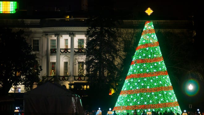 The National Christmas Tree on display in Washington, D.C.