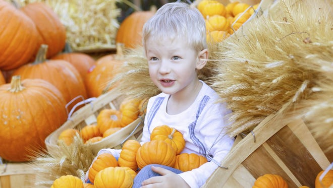 Fall festivals will beheld throughout the Upstate this weekend.