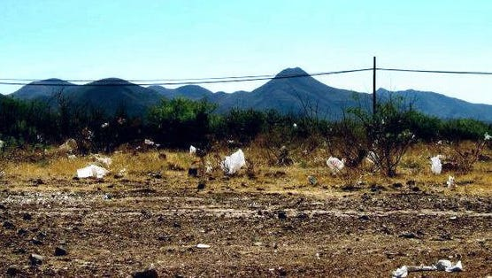 This 2012 photo was taken just east of Safeway Plaza in Bisbee. Today, the landscape is free of plastic bags.