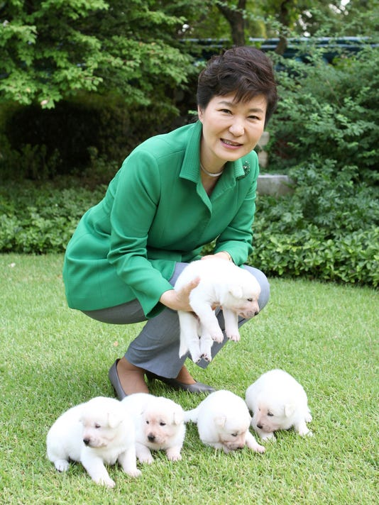 AP SOUTH KOREA POLITICS PARK'S DOGS I KOR