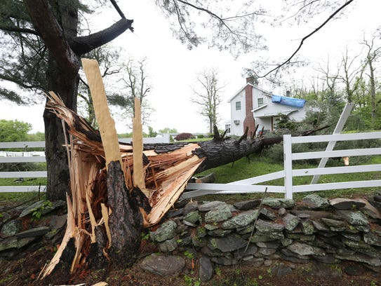 A downed tree on Baxtertown Road in Fishkill on May