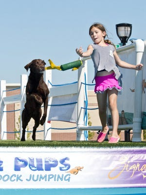 Pier Pups Canine Dock Jumping will return for this year's Dog Day in Oak Creek.