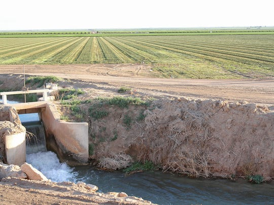 Water flows through a canal next to an alfalfa field near Brawley in the Imperial Valley.