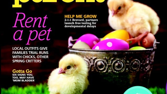 Adorbs!!! You know you want to rent a baby chick after seeing these. (Or at least admire them from this cover.)