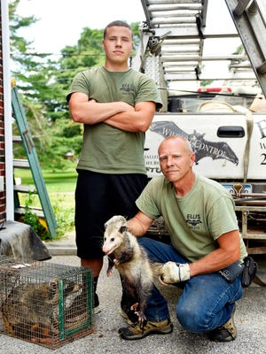 Ellis Animal Control owner Mike Ellis, right, and his son Mike Ellis Jr. trap and remove wild animals ranging from opossums to bats to skunks.