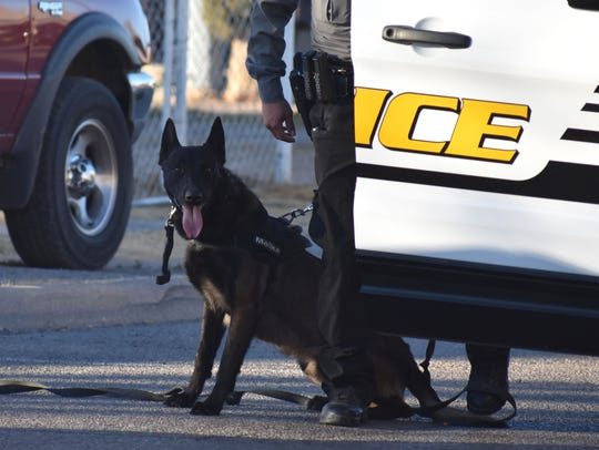 The APD's five-year plan includes an increase of one K9 unit, like K9 officer Moika shown in this file photo.