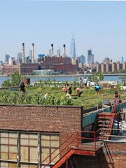 """This undated photo provided by Ten Speed Press shows the Eagle Street Rooftop Farm featured in the book, """"The Rooftop Growing Guide,"""" by author Annie Novak, published in 2016 by Ten Speed Press, an imprint of Penguin Random House LLC. (Annie Novak/Ten Speed Press via AP)"""