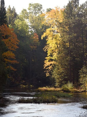 Federal officials are delaying a ban on alcoholic beverages along sections of three rivers in the Huron -Manistee National Forest in northern Michigan.