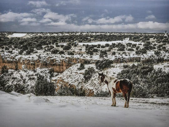 """Painted Snow"" is an image from Jim Livingston's photography exhibit at the Kemp Center for the Arts. Livingston took the photo outside the Palo Duro Riding Stables."