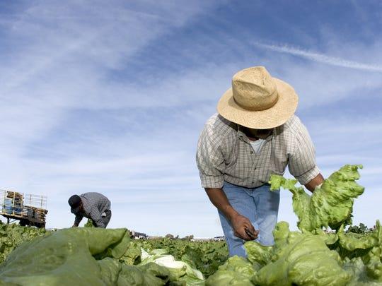Los economistas atribuyeron esas diferencias a varios factores, como una desaceleración en el comercio de productos agrícolas y manufacturados.