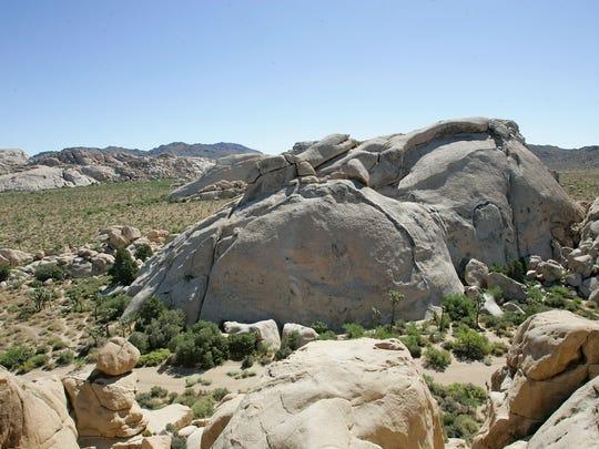 Rock formations at Joshua Tree National Park.  7/22/11