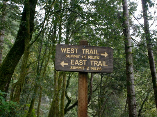 This sign points hikers onto the loop that travels through Humbug Mountain on the Oregon Coast.