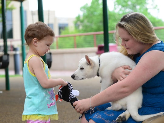 Sapphyre Johnson, 3, who has two prosthetic feet, approaches Katrina Riddle, right, holding Johnson's new puppy Lt. Dan. The 9 month-old puppy was born without a front paw.