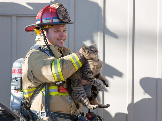 A firefighter rescues a cat from the scene of a residential structure fire on Broadway in the Hanover Borough on December 6th, 2015.