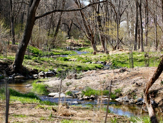 Spring Nature Walk at Richard M. Nixon County Park