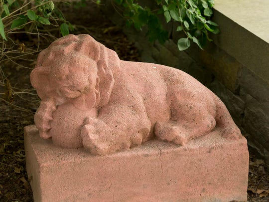 A lion sculpture by Eugenie Gershoy after it was cleaned. The sculpture is on display in a garden on the grounds of the Cayuga Medical Center.