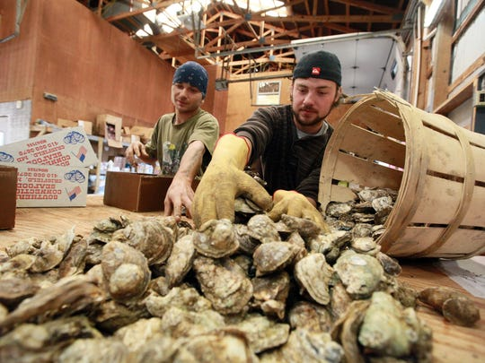 Warehouse workers Edward Gillespie, left and Danny Diggs sort oysters into boxes at Southern Connection Seafood in Crisfield in this file photo.