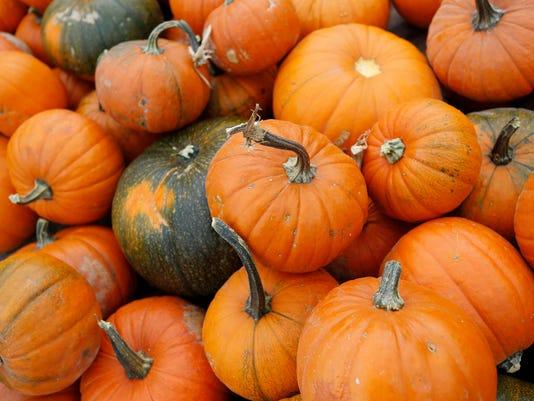 LAF A2 Standalone Congress Street UMC Pumpkins