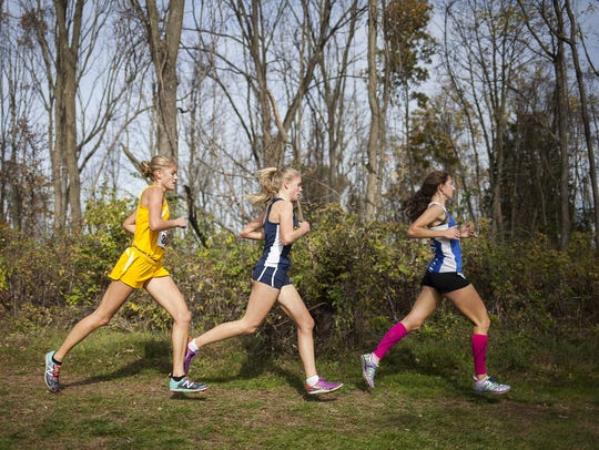 Taryn Parks and Oley Valley's Rebecca Snyder race through