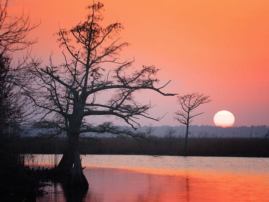 Experience the beauty of the Pascagoula River while