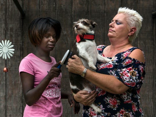Shakira Koenig, 14, takes a moment to carefully brush one of the family dogs as her mother, Kathy Koenig holds the dog still at their home in Newburgh, Ind., on Monday, July 3, 2017.