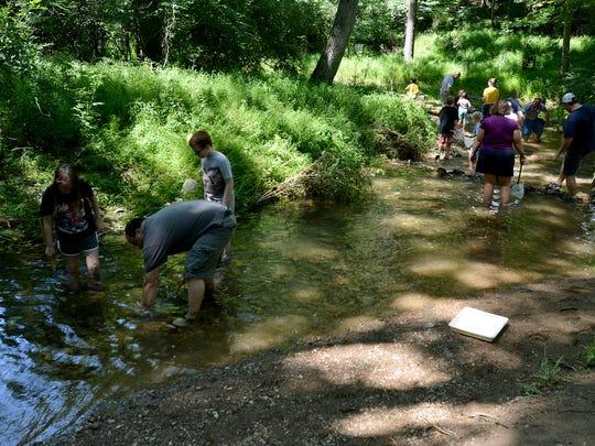 Jeri Jones from York County Parks leads a stream study