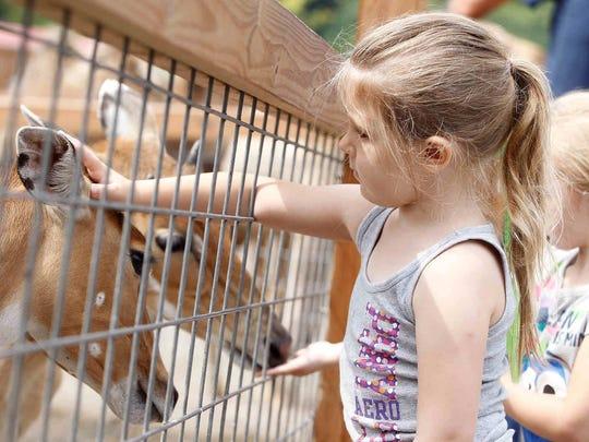Ava's Little Heroes, at Animal Adventure in Harpursville. Saturday, August 12, 2017. Thomas La Barbera / Correspondent