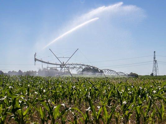 FARMING-4.jpg
