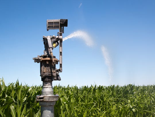 An irrigation sprinkler sprays a cornfield in Grandview,