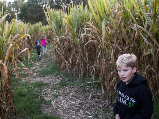 October 20, 2017 - Elijah Hubbard 9, looks back to his parents while he and his siblings make their way through the monster mystery corn maze at Jones Orchard.