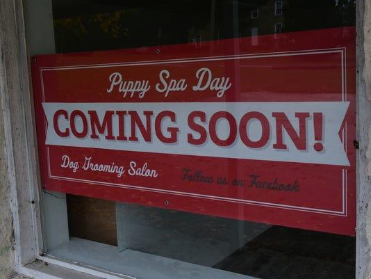 cpo-mwd-110817-puppy-spa-day