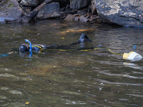 TVA biologist Jeff Simmons snorkels Duck Creek in his hunt for the Tennessee Logperch.