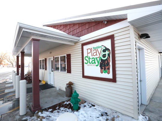 Play and Stay owners Joel Gudex and Jennifer Steffes have installed a pool for dogs to play in at their business in Peebles.
