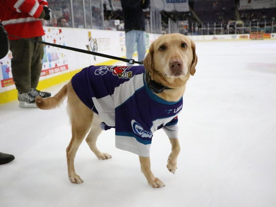 """The Shreveport Mudbugs will host their annual """"Pooches on the Pond"""" on Thursday when they face first-place Amarillo."""