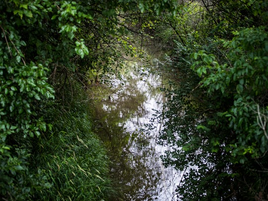 A small stream flows through the property of Mike Starkey,