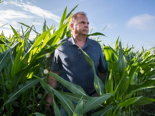 Mike Starkey, a farmer in Brownsburg, Ind., poses in a field amongst corn plants on Wednesday, June 20, 2018. Starkey's farm has become a destination for politicians and fellow farmers who are eager to see how he uses cover crops to make his soil healthier.