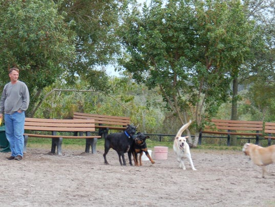 Dog Training Cape Coral