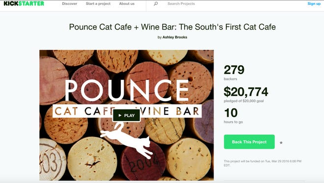 Charleston to get South's first cat cafe.