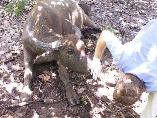 Shreveport veterinarian Clint Waddell, a member at