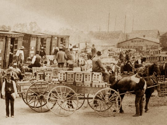 Strawberries being loaded on a train, early 1900s.