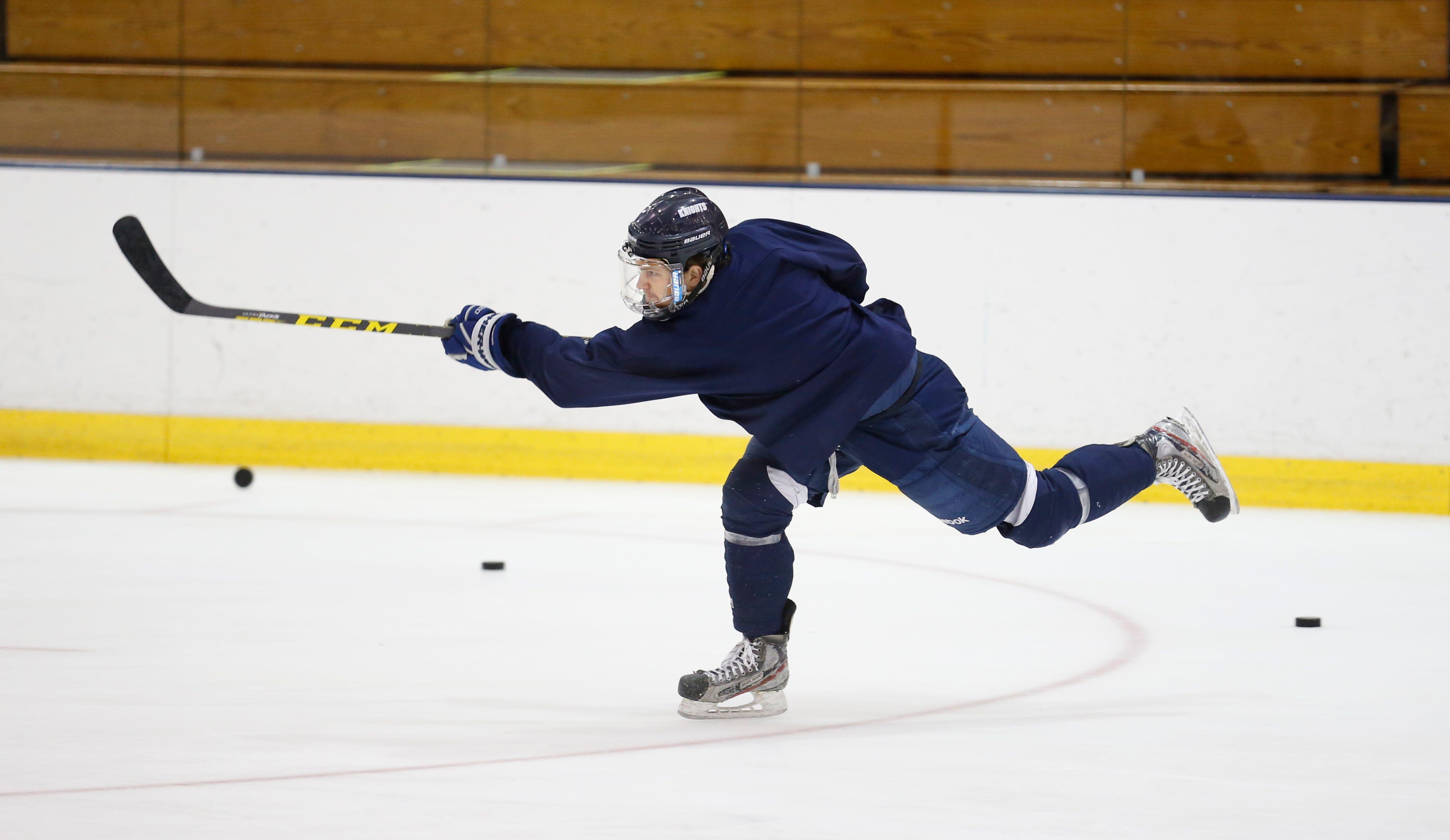 Geneseo Hockey Injury Statistics - image 5