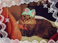 Quirky Kreayshawn posted an equally quirky shot of her cat, Choppa, on her Instagram page.