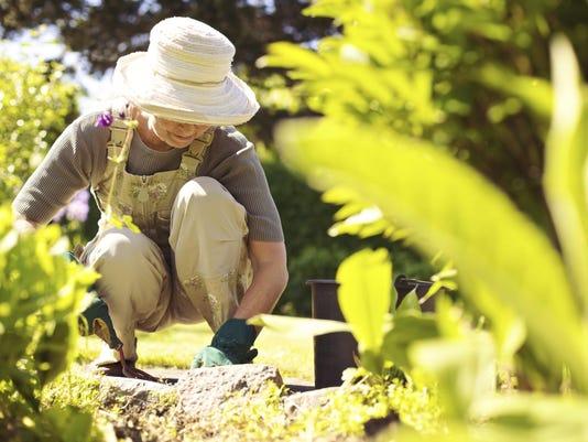 Gardening-MAIN.jpg