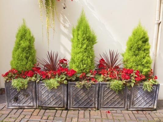 vtd Master Gardener Column for March 21