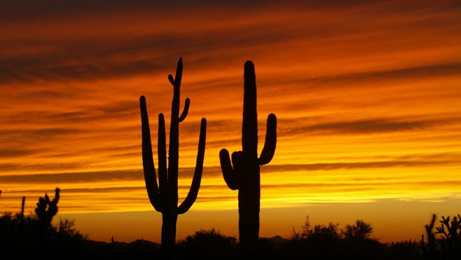 A colorful Arizona sunset near Cave Creek.