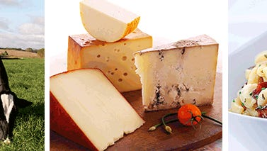 Gains during the past two weeks in the spot market for dairy commodities at the CME Group (Chicago Mercantile Exchange) raised the price for Cheddar block cheese to its highest level during 2016.