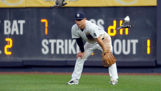 In this Saturday, Sept. 10, 2016 photo, New York Yankees right fielder Rob Refsnyder looks on as he is joined by pigeons during the eighth inning of a baseball game against the Tampa Bay Rays at Yankee Stadium in New York.